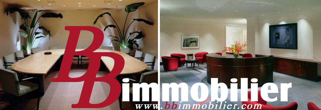 BB immobilier